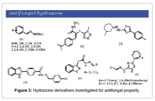 phytochemistry-biochemistry-antifungal-property