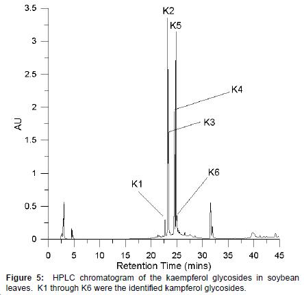 plant-biochemistry-physiology-kaempferol-glycosides