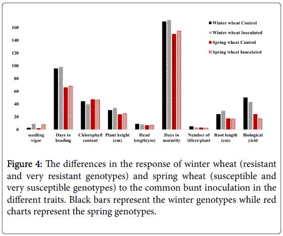 plant-genetics-breeding-very-resistant-genotypes