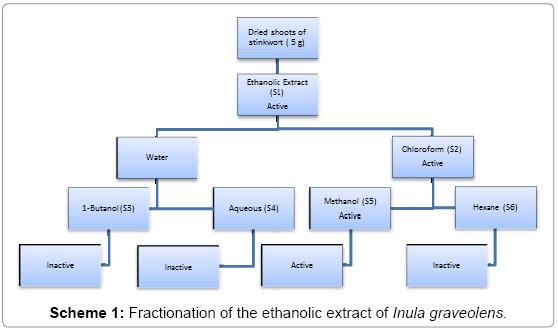 plant-pathology-microbiology-ethanolic-extract