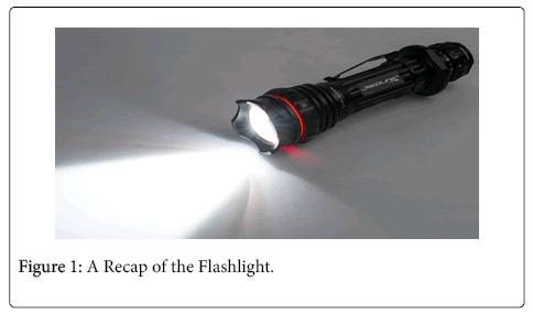 political-sciences-public-affairs-flashlight
