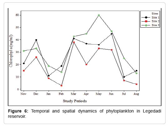 pollution-effect-phytoplankton