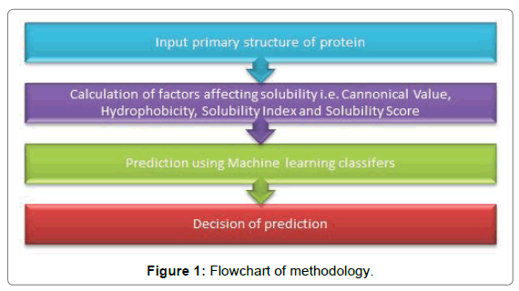 proteomics-bioinformatics-Flowchart-methodology