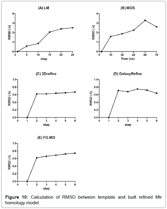 proteomics-bioinformatics-homology-model