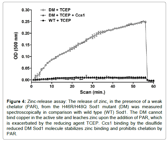 proteomics-bioinformatics-leaches-zinc