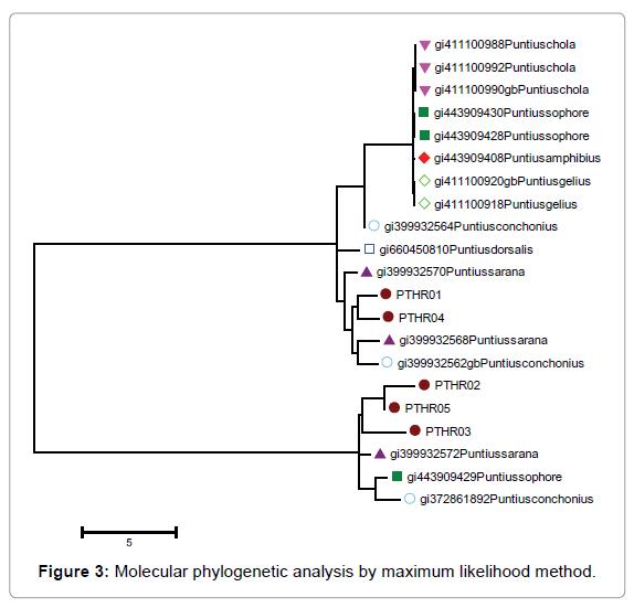proteomics-bioinformatics-likelihood-method