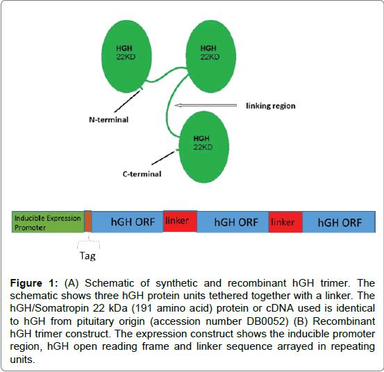 proteomics-bioinformatics-reading-frame