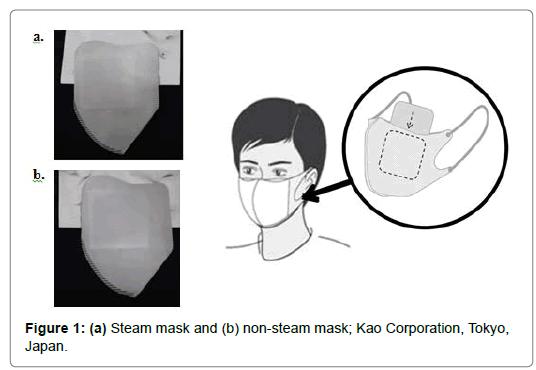 pulmonary-respiratory-Steam-mask