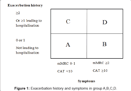 pulmonary-respiratory-medicine-Exacerbation-history
