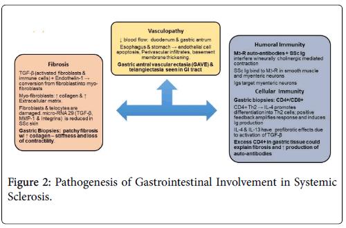 rheumatology-Systemic-Pathogenesis