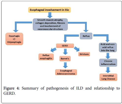 rheumatology-pathogenesis-contrast