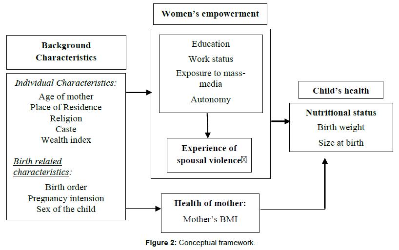 sociology-criminology-conceptual-framework