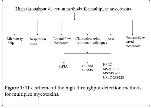 toxicology-multiplex-mycotoxins