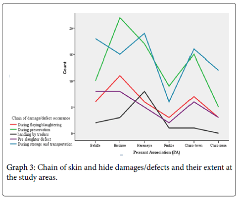 Assessments of Challenges and Marketing Channels of Skin and