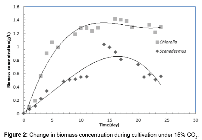waste-resources-biomass-concentration-cultivation