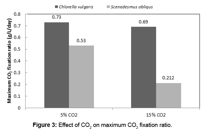 waste-resources-maximum-CO2-fixation